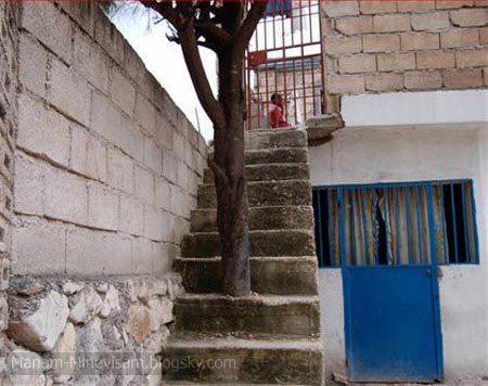 عجیب ترین پله های دنیا