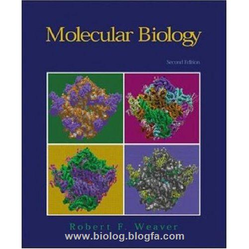سلولی مولکولی