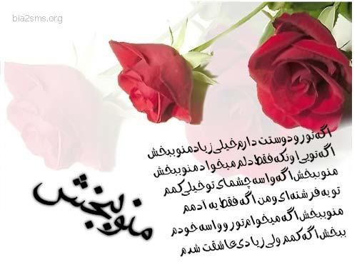 Image result for اس ام اس آشتی