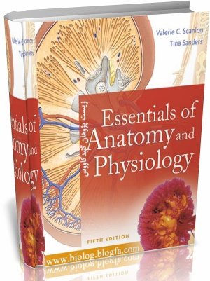 human anatomy and physiology lab manual 9th edition