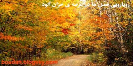 رویارویی فصل ها در آغازین روزهای پاییز