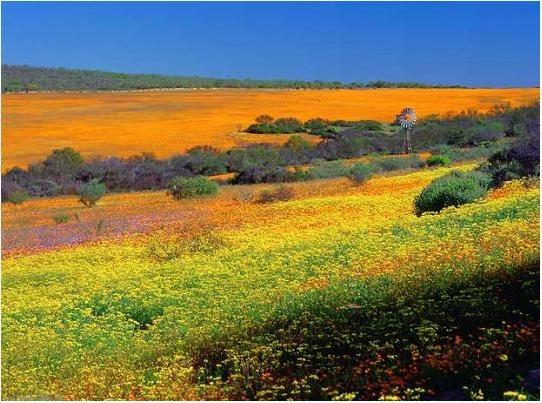 www.dostham.blogsky.com