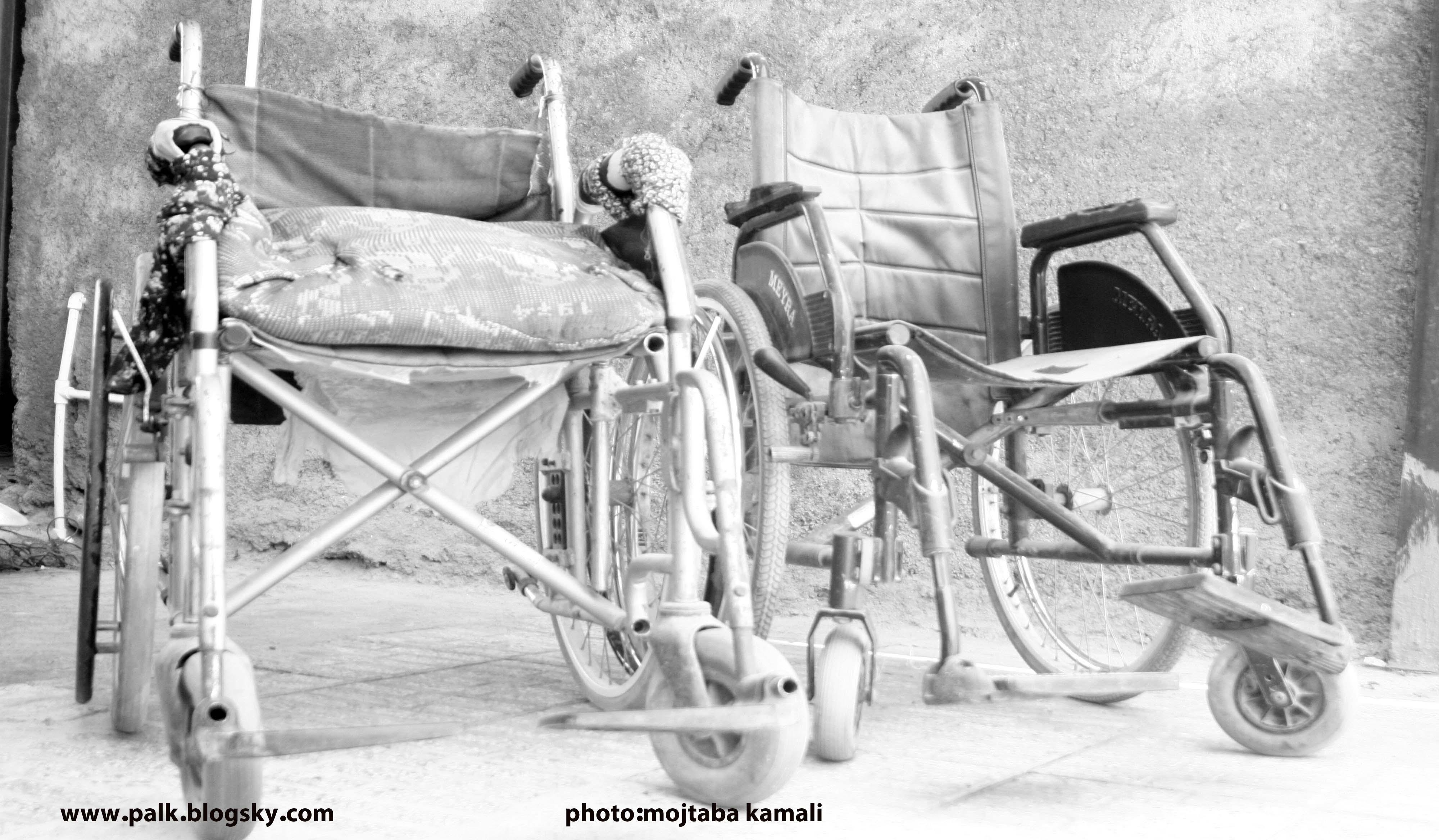 عکس از مجتبی کمالی