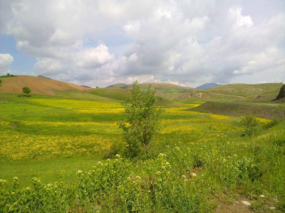 طبيعت سردشت - روستای ديوالان