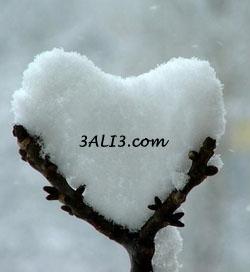 http://s1.picofile.com/file/6263672032/barfi89.jpg