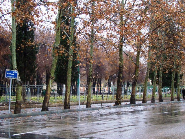 حضور باران در خیابان سمیه
