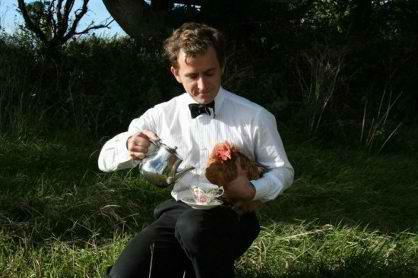 هتلی عجیب در بریتانیا مخصوص مرغ و خروس