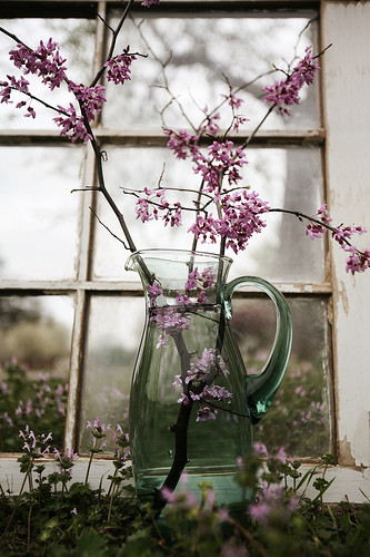 http://s1.picofile.com/file/6329651906/flickr_flower_photography_samantha_lamb_window_design_7a5096aedda858fc59c18a4a89c9ddcd_h.jpg