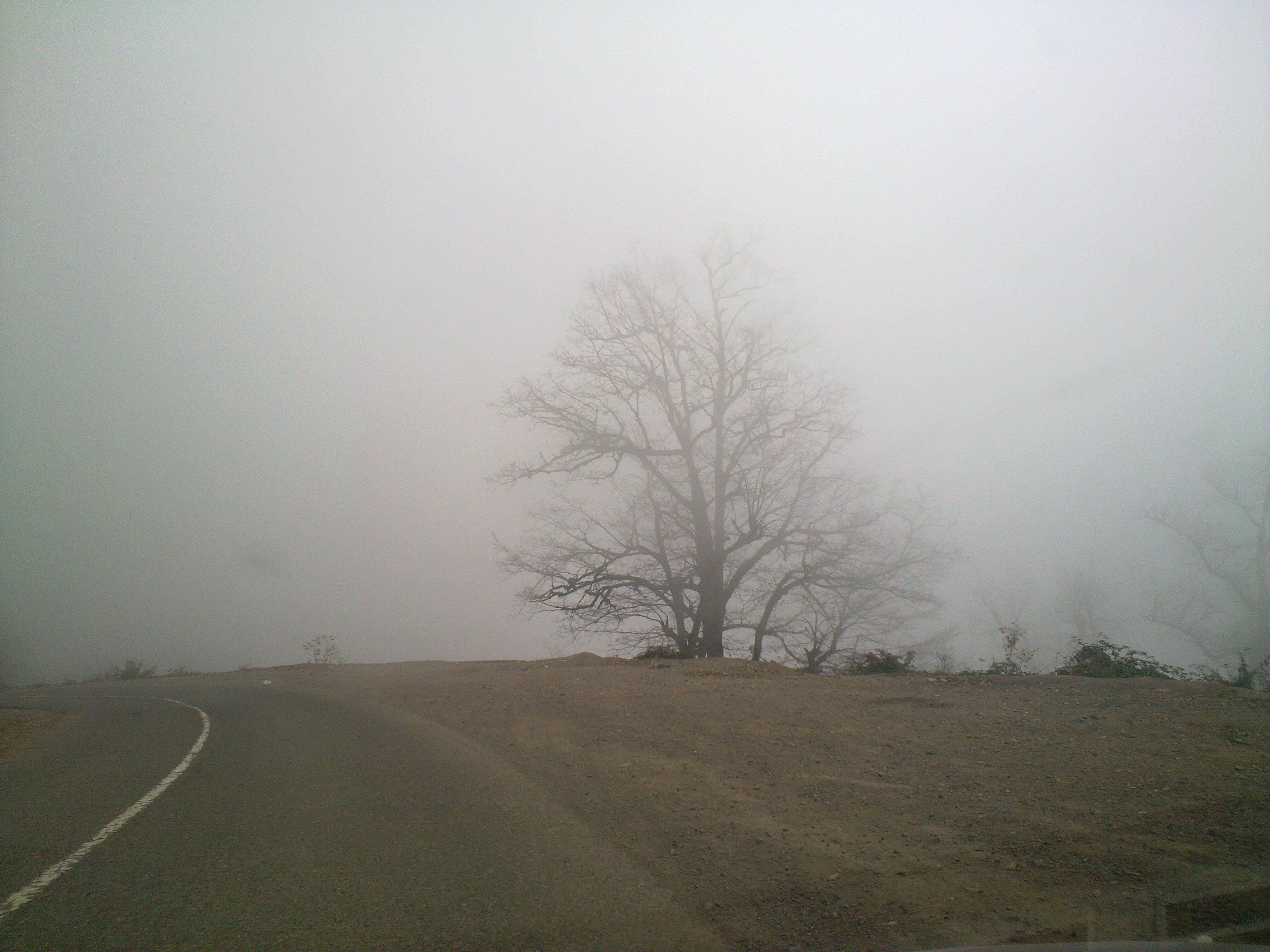 مه چیست؟و چگونه به وجود میآید؟