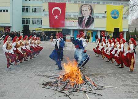 http://s1.picofile.com/file/6430759554/turkiye_otlar2.jpg