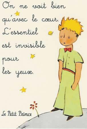 http://s1.picofile.com/file/6467563378/le_petit_prince_antoine_de_saint_exupery.jpg