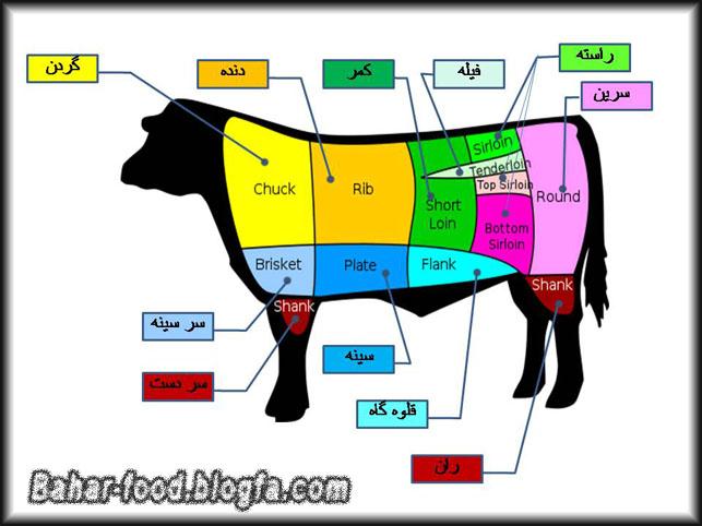 قیمت قلوه گاو