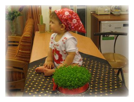 سبزه ای که خاله جون برامون فرستاده بود