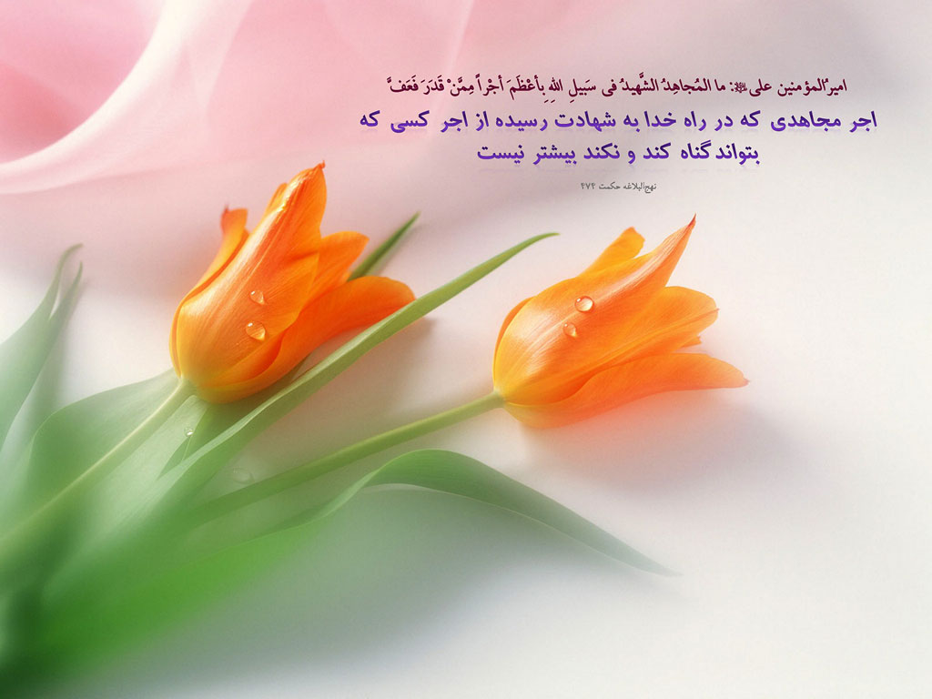 Image result for منتظر ظهور