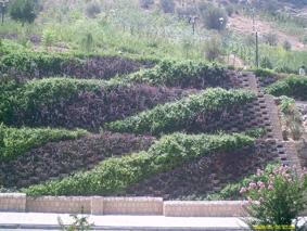 دیوار حایل با استفاده از گلفوژ(گلدان صخره ای / گلدان بتنی)