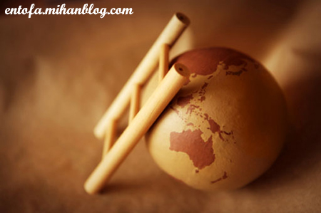 www.entofa.mihanblog.com