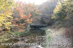 باغ ملی - سئول - کره جنوبی