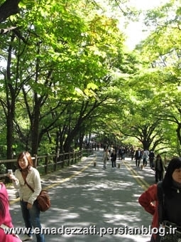 namsan park-seoul tower
