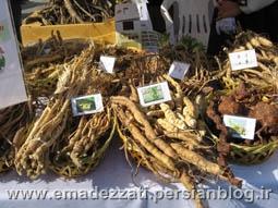 جشنواره ریشه های گیاهی در سئول