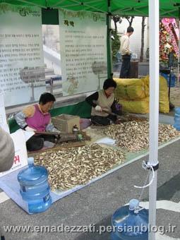 جشنواره جنسینگ در سئول