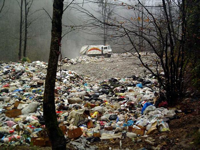 فاجعه جنگل های عباس آباد(تارنگار سنتور)