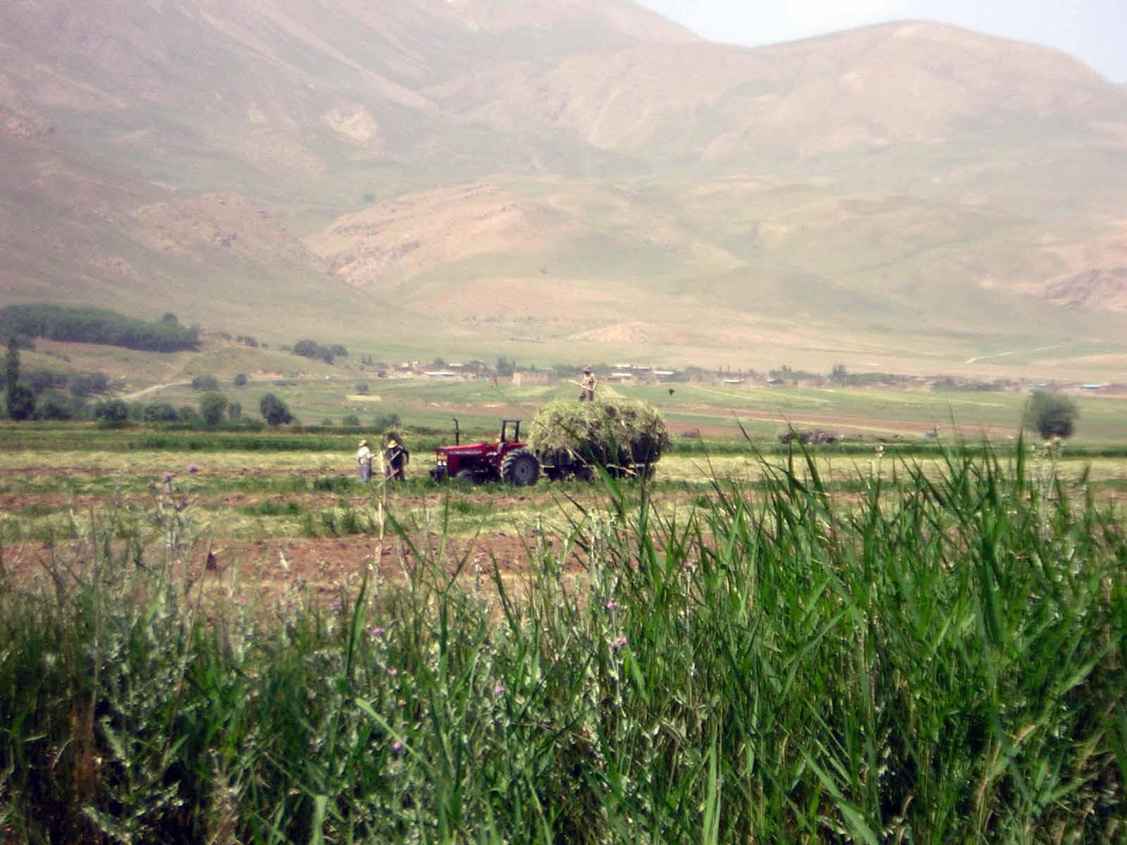 کشاورزی دربند