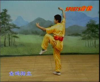 آموزش چینی فرم  مشت مست و میمون مست و فرم شیر ووشو جدید