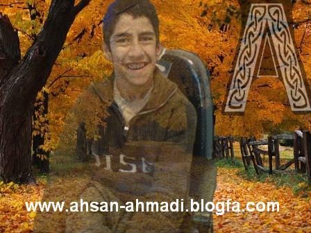 فعالیت های احسن احمدی