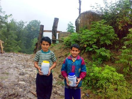 تمشک چینی در روستاهای لفور
