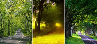 والپیپر های بسیار زیبا و دیدنی از جاده های رویایی