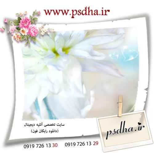 http://s1.picofile.com/file/7101861498/285.jpg