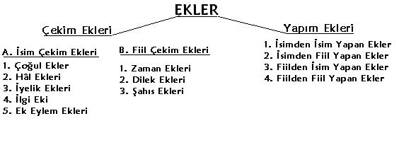 http://s1.picofile.com/file/7109435264/ekler_ve_sozcuk_yapisi.png