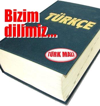 http://s1.picofile.com/file/7109435478/turkcemiz.jpg