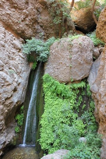 آبشاری در دره محل اطراق