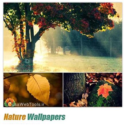 وال پیپر, کاغذ دیواری,Wallpaper,عکس زیبا