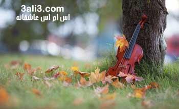 http://s1.picofile.com/file/7199175264/love_payiz.jpg