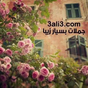 http://s1.picofile.com/file/7239512789/jomlat.jpg