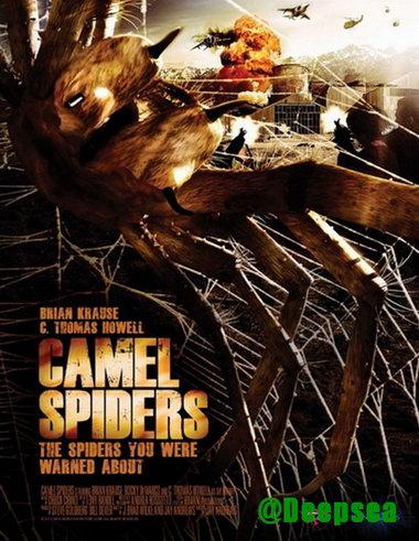 دانلود فیلم Camel Spiders 2011