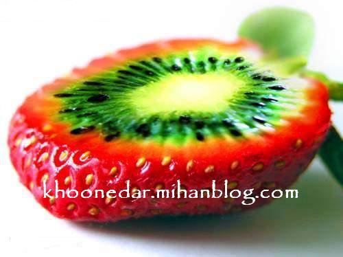 میوه های عجیب