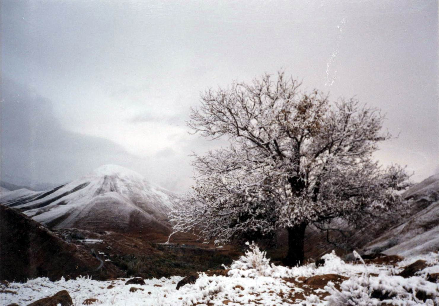زمستان شاهرود