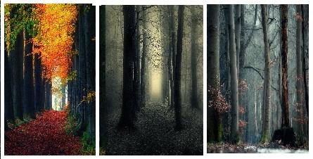 عکس های طبیعت