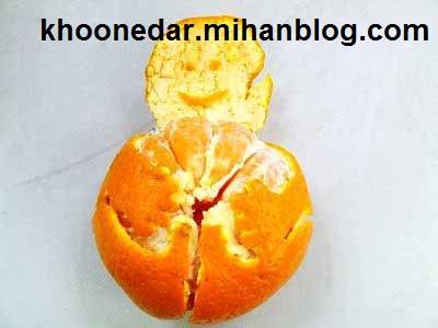 تزیین میوه نارنگی