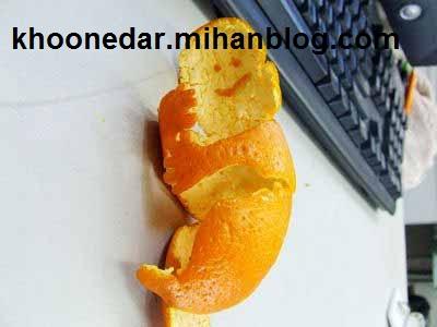 ترئین میوه نارنگی