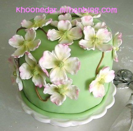 تزیین کیک ها