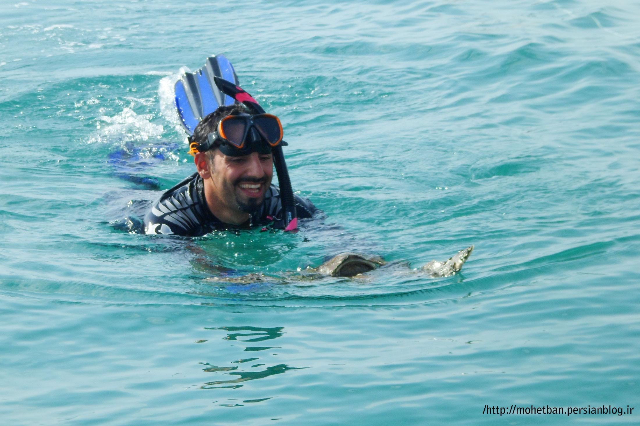 محمد کبادی شناگر طول خلیج فارس