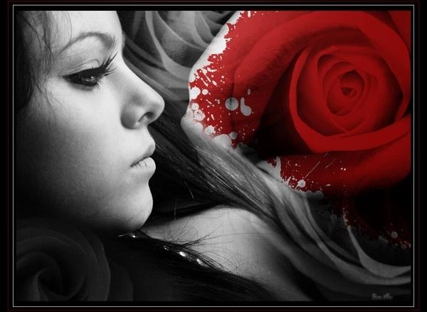 http://s1.picofile.com/file/7325866341/sekot.jpg