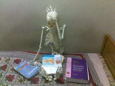Anatomy_.jpg