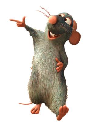 موش سر آشپز