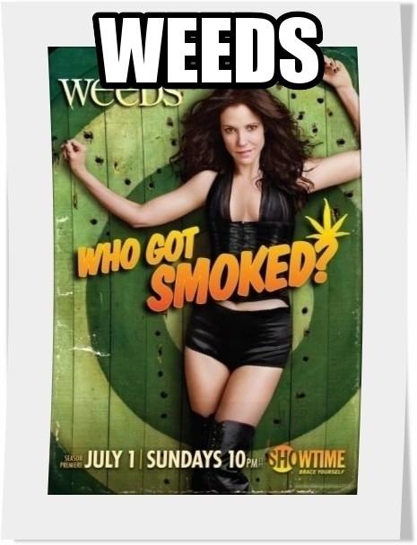 سریال Weeds فصل هشتم
