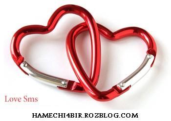 http://www.hamechi4bir.rozblog.com/